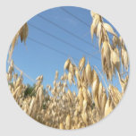 Oats Plant Stickers