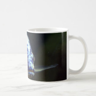 OB Peacock Cichlid #2 Coffee Mug