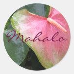 Obake Mahalo Classic Round Sticker