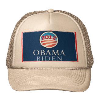 Obama/gorra 2012 de Biden Gorro