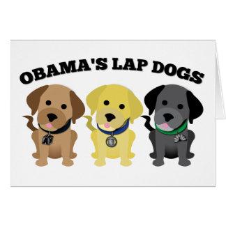 Obama Lap Dogs - The Mainstream Media Card