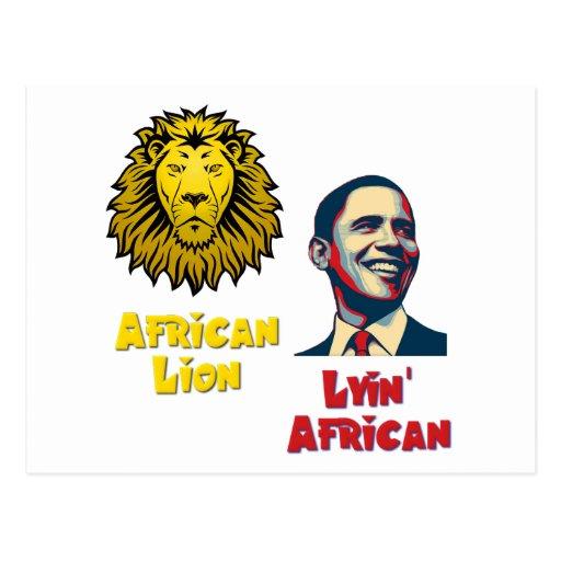 Obama Lyin' African/ African Lion Post Card
