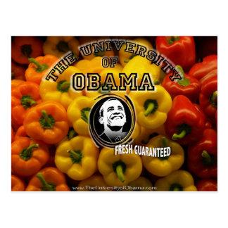 Obama peppers FRESH GUARANTEED Postcard