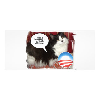 Obama Pet/Political Humor Rack Card