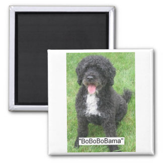 Obama Pet Portuguese Water dog 2 Inch Square Magnet