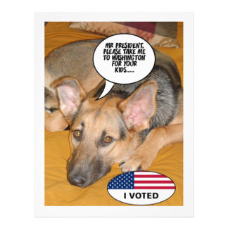 Obama Pet/Whitehouse Humor Personalized Flyer