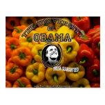 Obama sazona FRESCO con pimienta GARANTIZADO Postal