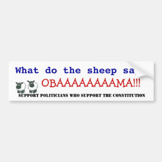 Obama vs the Constitution Bumper Stickers