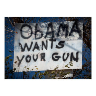 Obama Wants Your Gun Poster