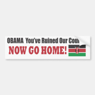 OBAMA You've Ruined Our Country - Now Go Home! Bumper Sticker