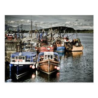 Oban Harbour Fishing Boats Postcard