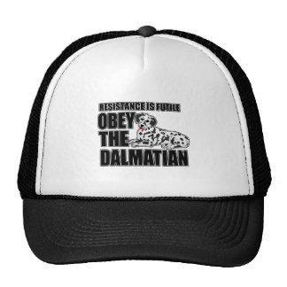 Obedezca al Dalmatian Gorras