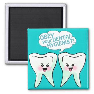 Obedezca al higienista dental imán cuadrado