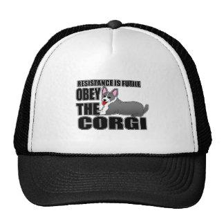 Obedezca el Corgi Galés de la rebeca Gorra