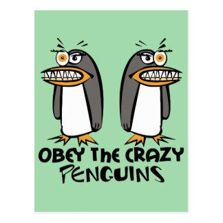 Obedezca el diseño gráfico de los pingüinos locos tarjeta postal
