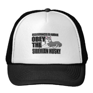 Obedezca el husky siberiano gorra