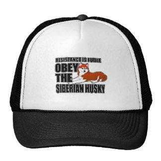 Obedezca el husky siberiano gorras