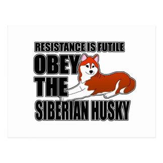 Obedezca el husky siberiano tarjetas postales