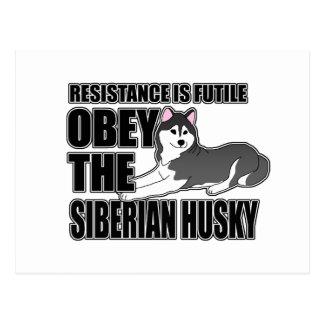 Obedezca el husky siberiano tarjeta postal