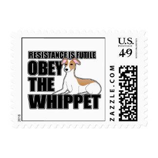 Obedezca el Whippet Franqueo