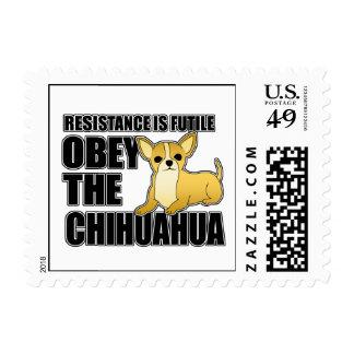 Obedezca la chihuahua sello