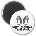 ¡Obedezca los pingüinos locos! Iman Para Frigorífico
