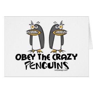 ¡Obedezca los pingüinos locos! Tarjeta