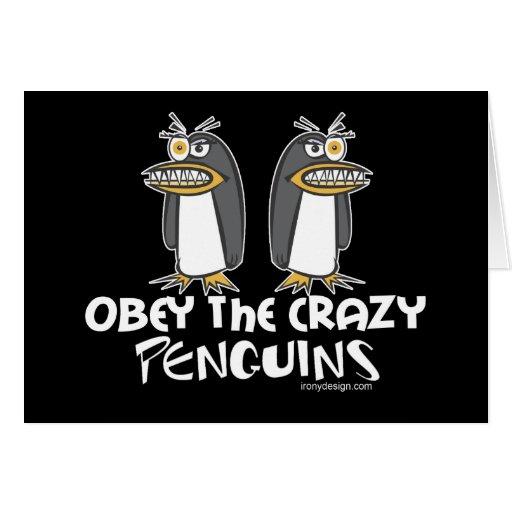 ¡Obedezca los pingüinos locos! Tarjeta De Felicitación