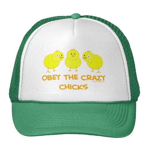Obedezca los polluelos locos gorras