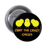 Obedezca los polluelos locos pin