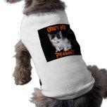 Obedézcame campesino ropa de perros