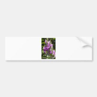 Obedient Flower or Dragon Flower Bumper Sticker