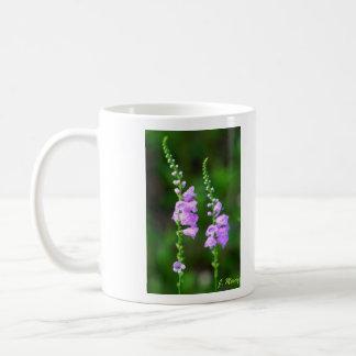 Obedient Plant Flowers Coffee Mug