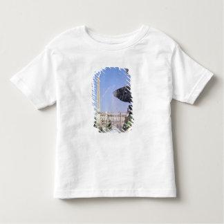 Obelisk, originally from Luxor, erected in 1836 Toddler T-shirt