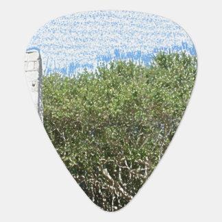 obelisk sketch landscape trees sky florida guitar pick