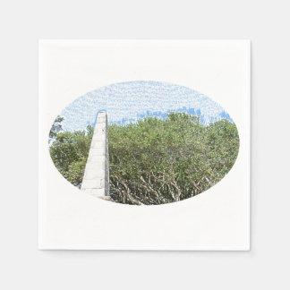 obelisk sketch landscape trees sky florida disposable napkins