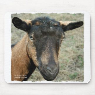 Oberhasli brown goat head shot in color mouse pad