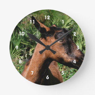 oberhasli doe ears back goat animal image round clock