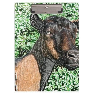 oberhasli doe goat animal image clipboard