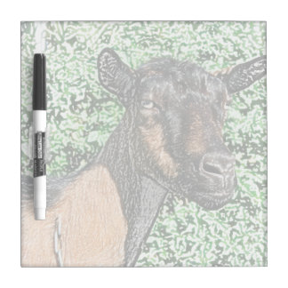 oberhasli doe goat animal image dry erase board