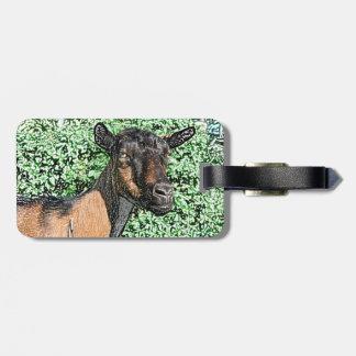 oberhasli doe goat animal image luggage tags