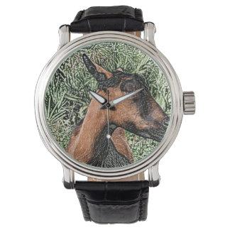 oberhasli doe goat sketch watches