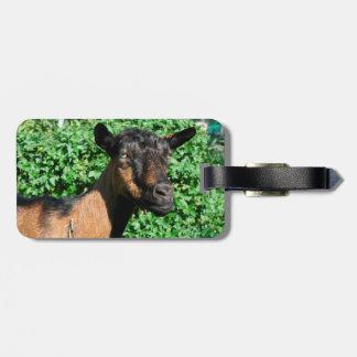 oberhasli goat doe side view travel bag tags