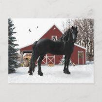 """""""Oberon In Winter"""" Postcard"""