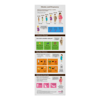 "Obesity and Pregnancy 12"" x 36"" Infographic Poster"