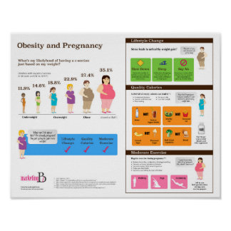 "Obesity and Pregnancy 14"" x 11"" Infographic Poster"