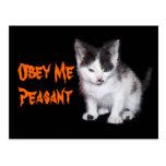 Obey Me Peasant Postcards