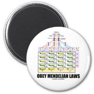 Obey Mendelian Laws (Dihybrid Cross Peas) 2 Inch Round Magnet