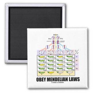 Obey Mendelian Laws Dihybrid Cross Peas Refrigerator Magnet