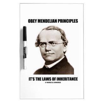 Obey Mendelian Laws Of Inheritance (Gregor Mendel) Dry Erase Board